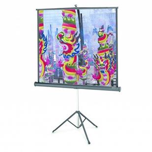 Мобильный проекционный экран Projecta ProView 178x178см